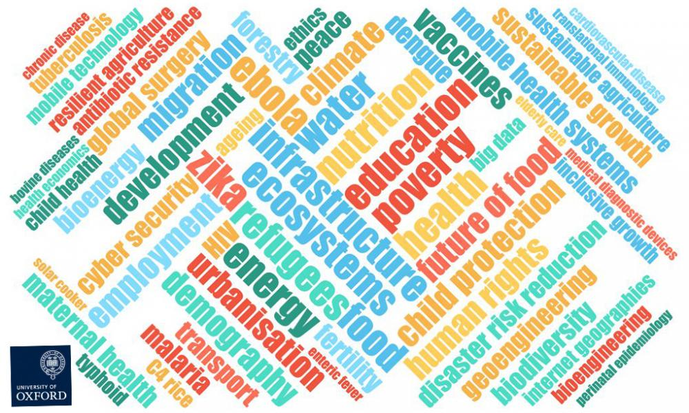 Image of expertise wordcloud in yellow, blue, red and green. Diagonal text